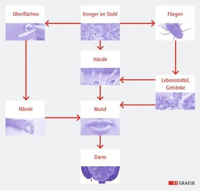 is plavix a statin