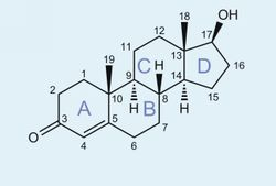 Want To Step Up Your steroide online erfahrungen? You Need To Read This First