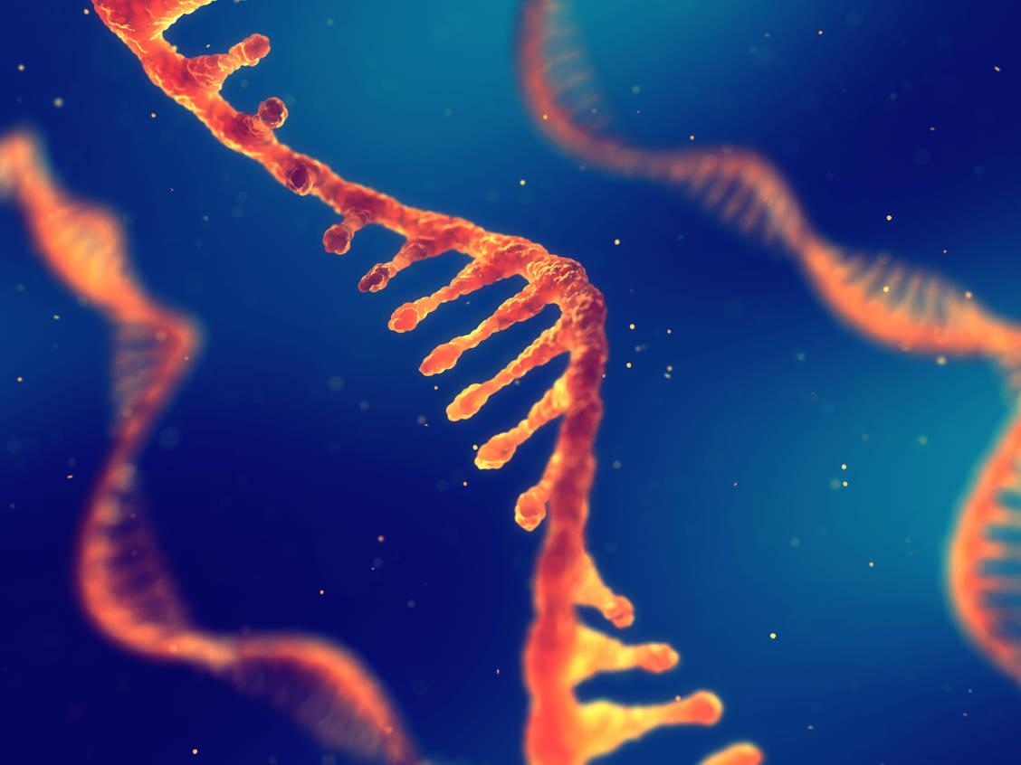 Der Pandemieimpfstoff BNT162b2 enthält Boten-RNA, die die Bauanleitung für das Spike-Protein von SARS-Coronavirus-2 enthält. / Foto: Adobe Stock/nobeastsofierce