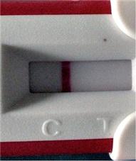 Negativ test trotzdem schwanger