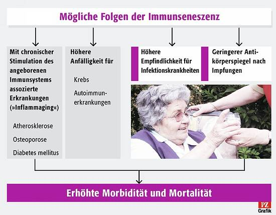 wie lange wirkt eine pneumokokken impfung