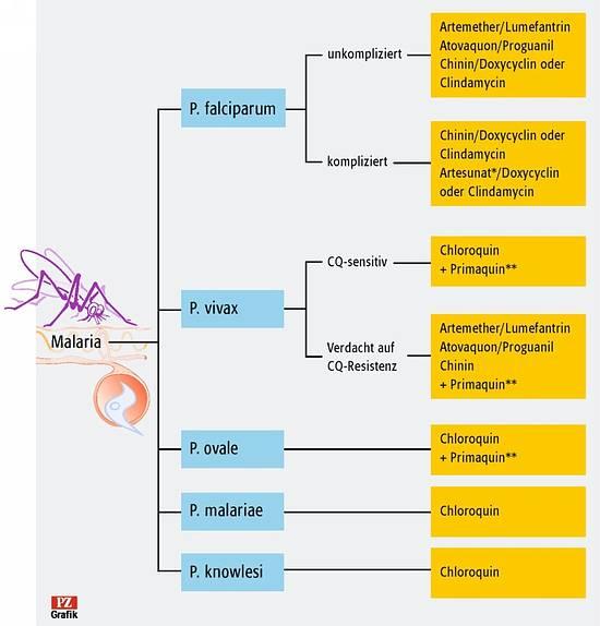 doxycyclin erfahrungen